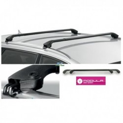 Barre Portatutto Modula per Audi A6 Avant dal 2011